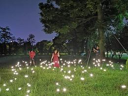 仿生萤火虫灯户外草坪装饰景观灯网红爆款萤火虫灯