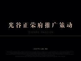 地产类-武汉正荣光谷项目视觉思路-1