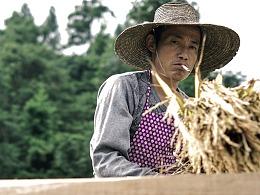 贵州采风摄影作品part1  梯田与农民