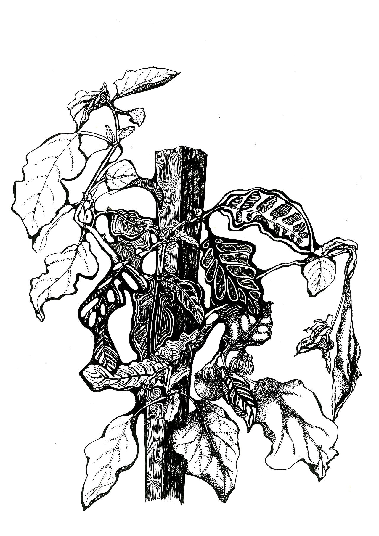 手绘|黑白装饰画(一)|纯艺术|其他艺创|gd权世界
