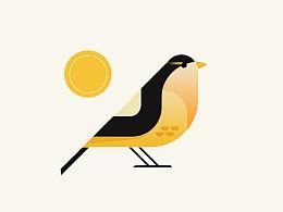 bird(每日一画)(追波练习))
