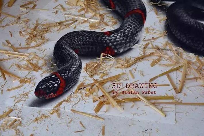 3d立体手绘蛇