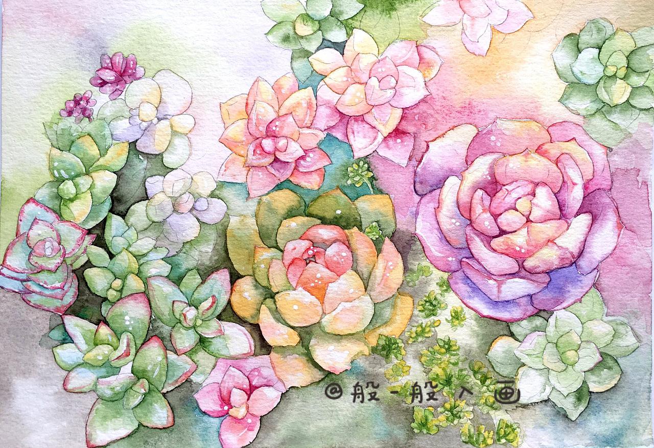 多肉植物水彩手绘