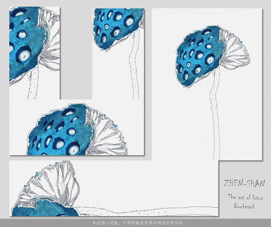 手绘莲蓬——《怡莲幽梦》|商业插画|插画|鸩山