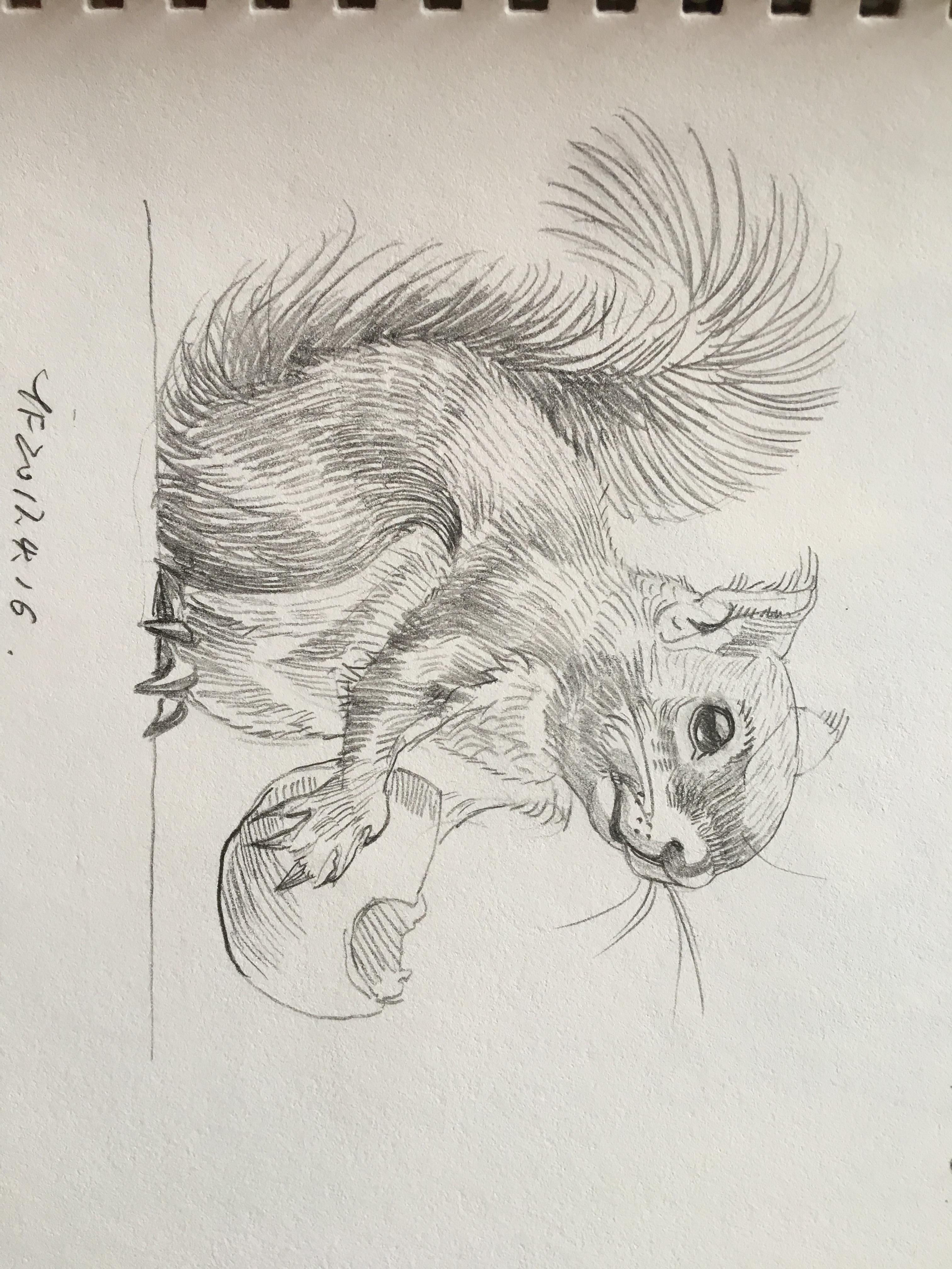 铅笔画 手绘 设计图展示
