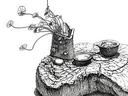 苏武《铜钱草》系列钢笔插画