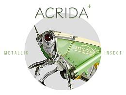 机械昆虫-Acrida