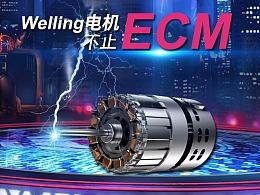 Welling电机,不止ECM