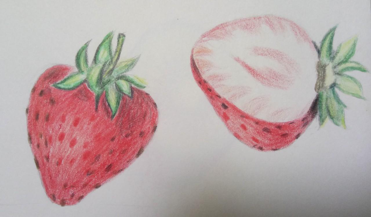 蔬菜水果彩铅画      图片