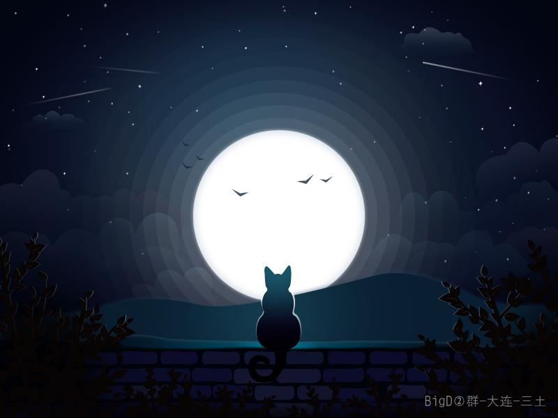手绘夜空猫咪图片