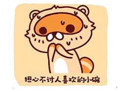 《浣熊小碗》动态表情包
