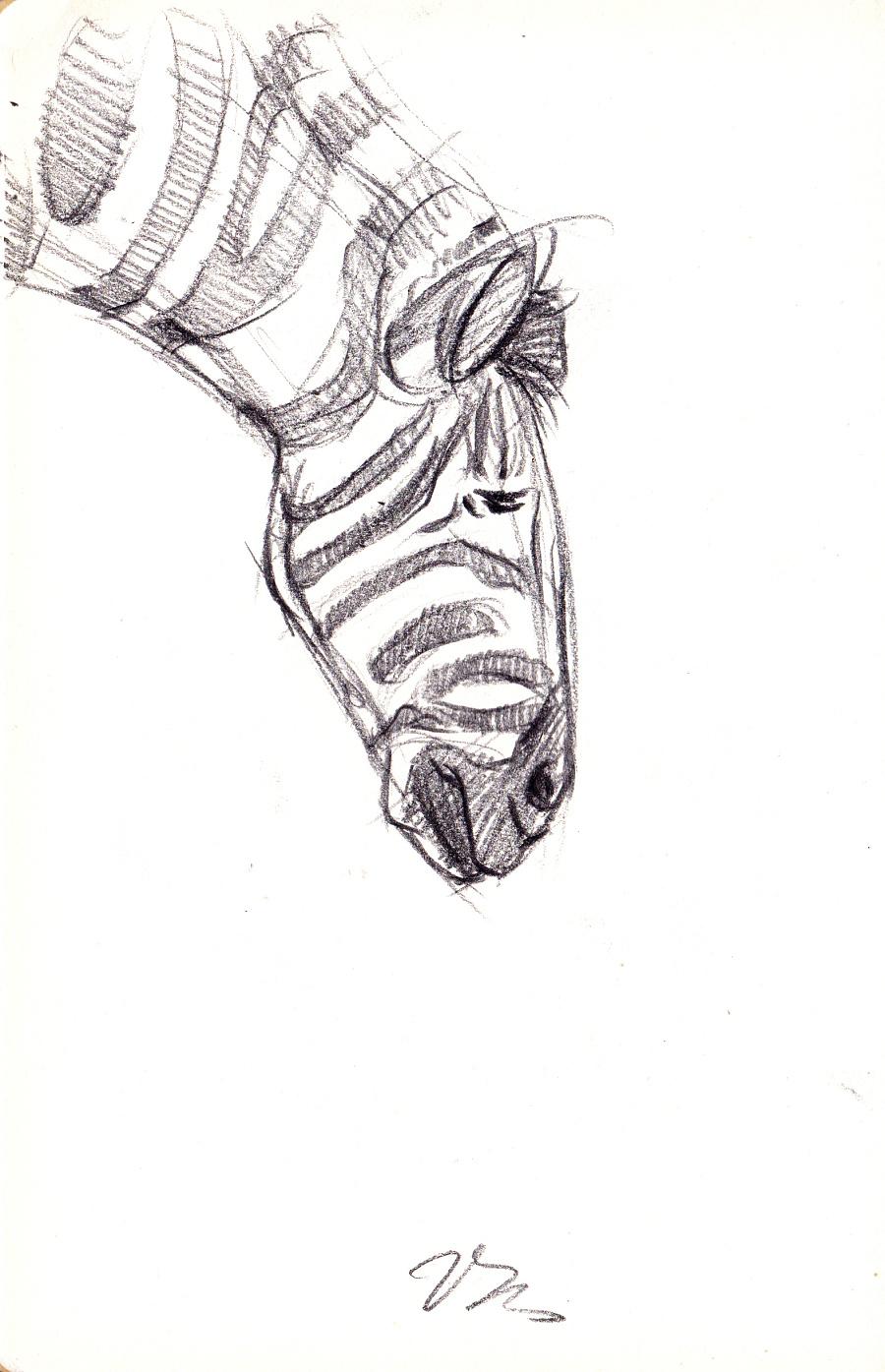 工业产品设计手绘之师法自然系列|单幅漫画|动漫