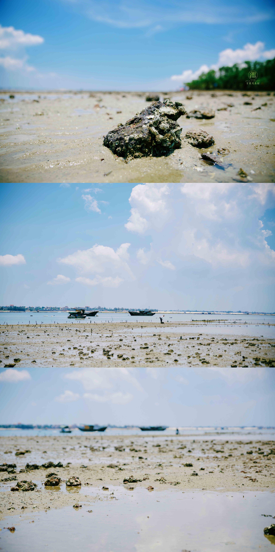 湛江 特呈岛 旅行摄影集