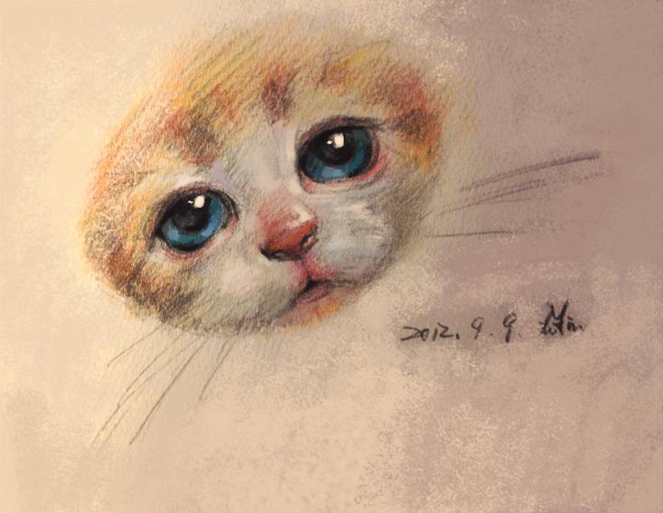 猫咪随手涂鸦手绘