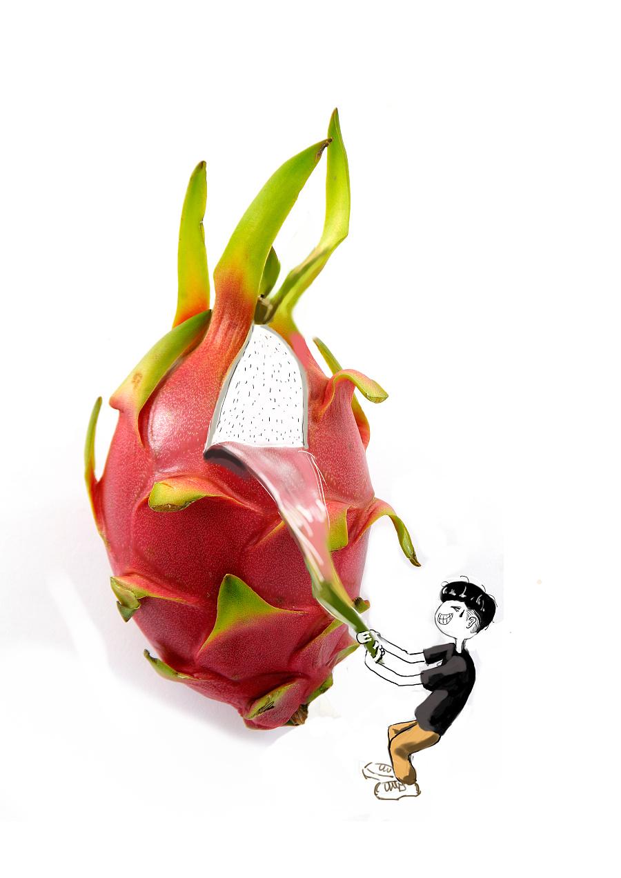 火龙果创意|商业插画|插画|魔人小欧图片