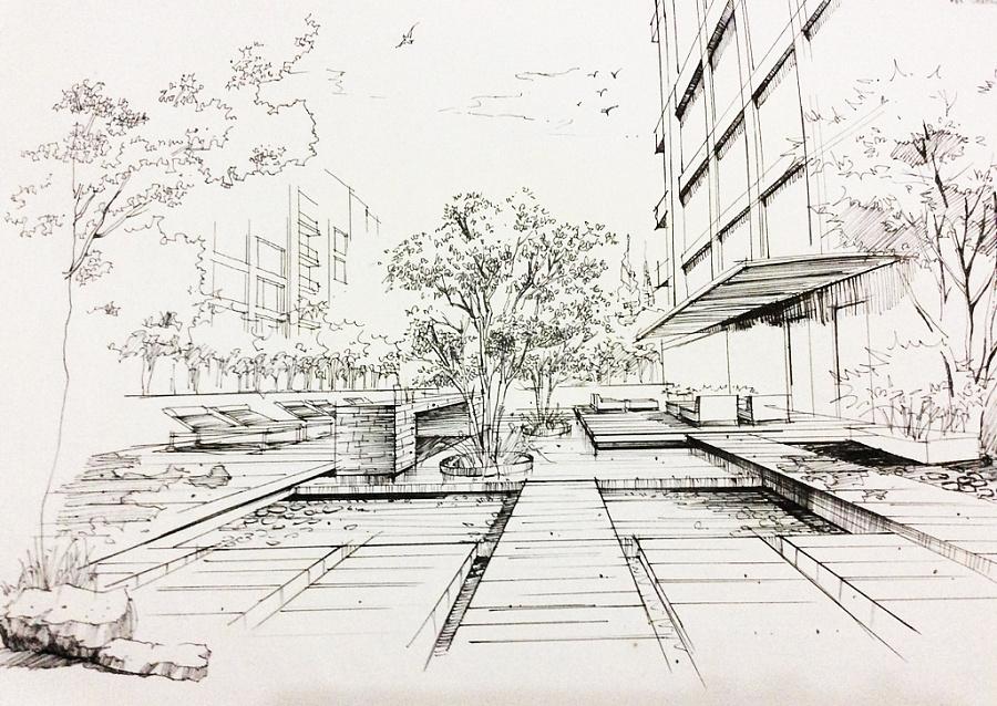 手绘—线稿|园林景观/规划|空间/建筑|小辛酱