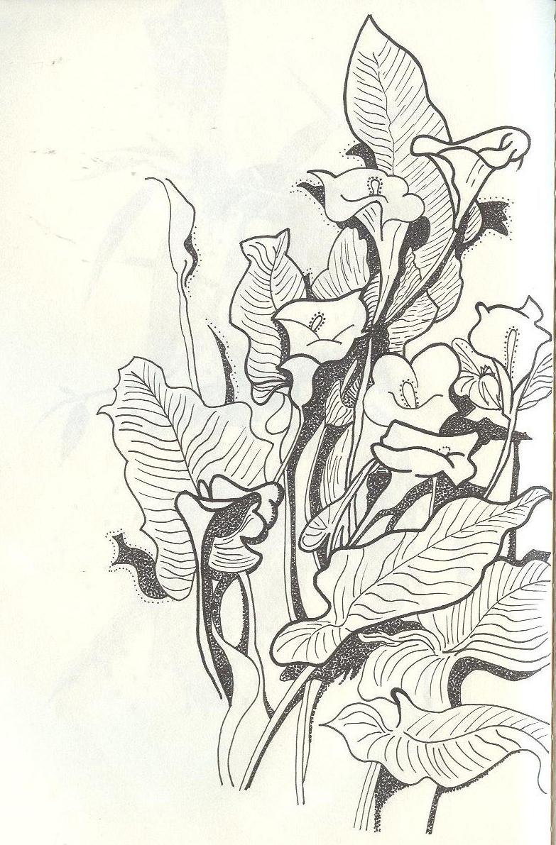 简笔画 手绘 线稿 783_1191 竖版 竖屏