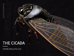 超写实图标习作-蝉(CICADA)