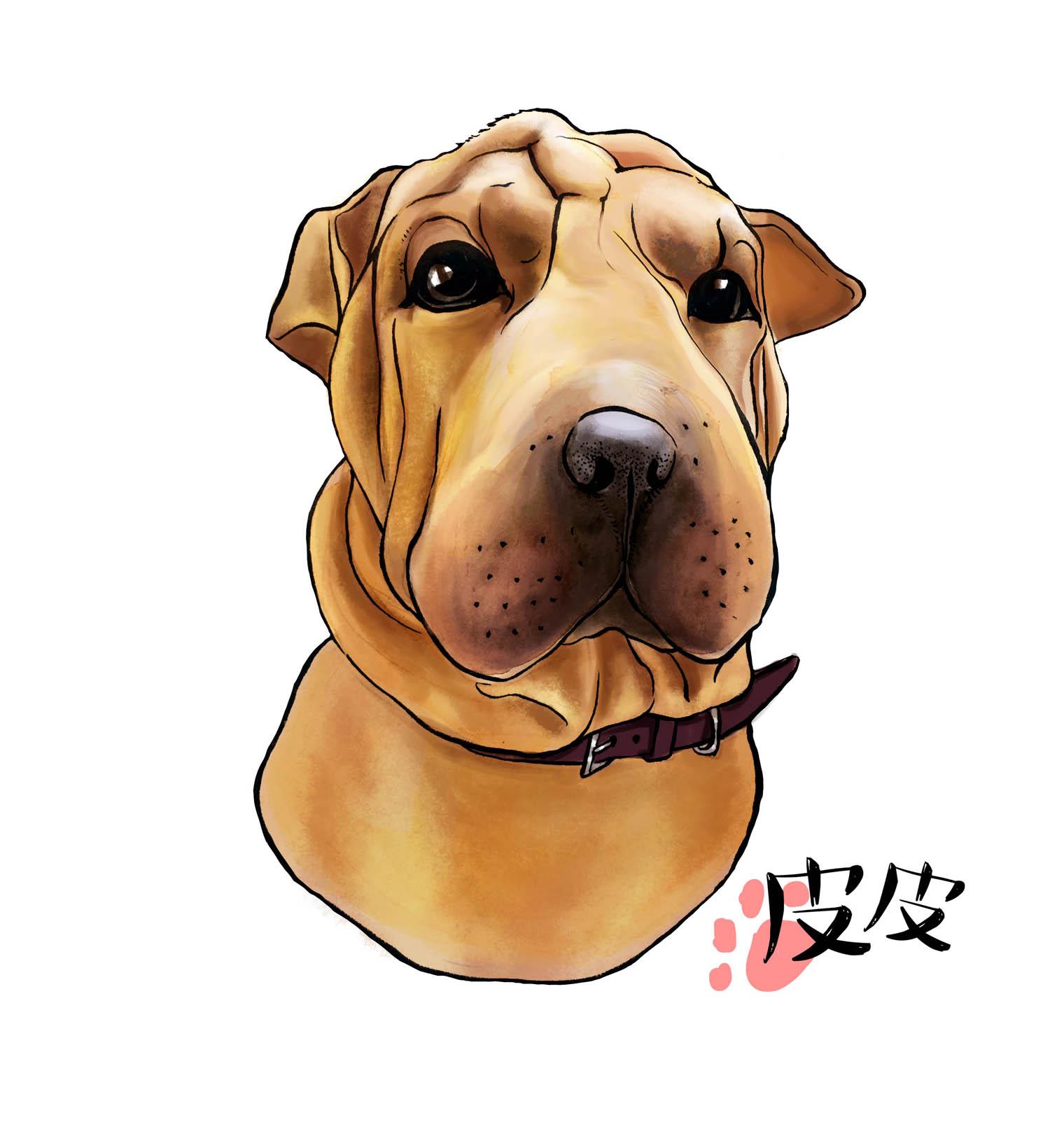 [ 家有萌宠 · 其乐无穷 ] amy手绘插画