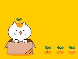 微信表情:夏晓猫
