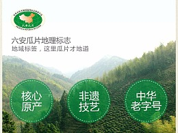潜香 徽六 六安瓜片 茶 绿茶