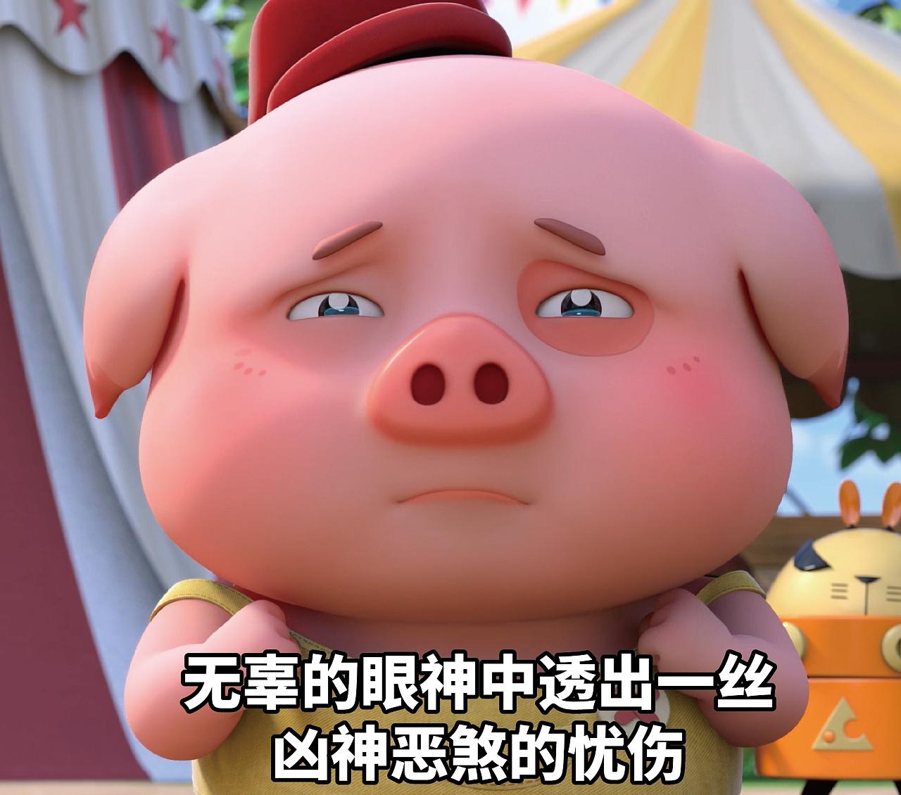 探探猫大全:豆豆猪图片的小表情中吃饭出一吧无辜包眼神透露表情图片