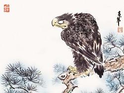 搞笑水墨系列之——《松鹰图》