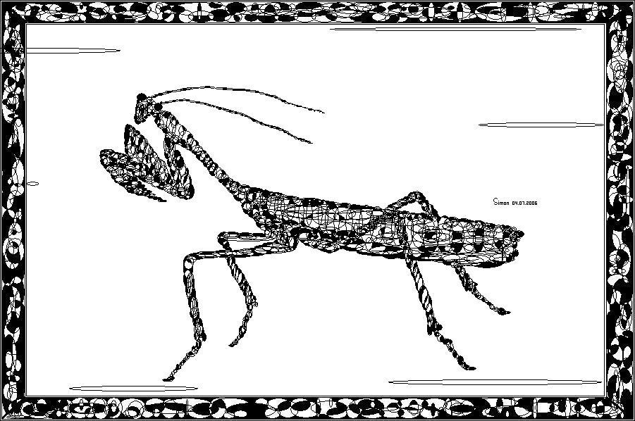 螳螂 手绘黑白画