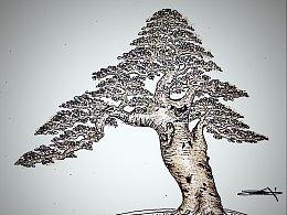 榆树盆景设计效果图