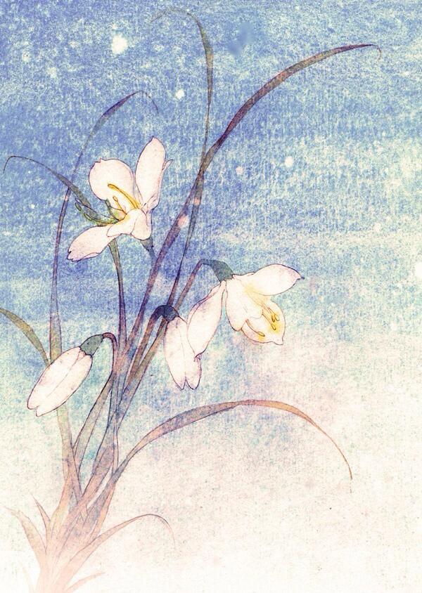 蜜约美术花艺—彩色铅笔花
