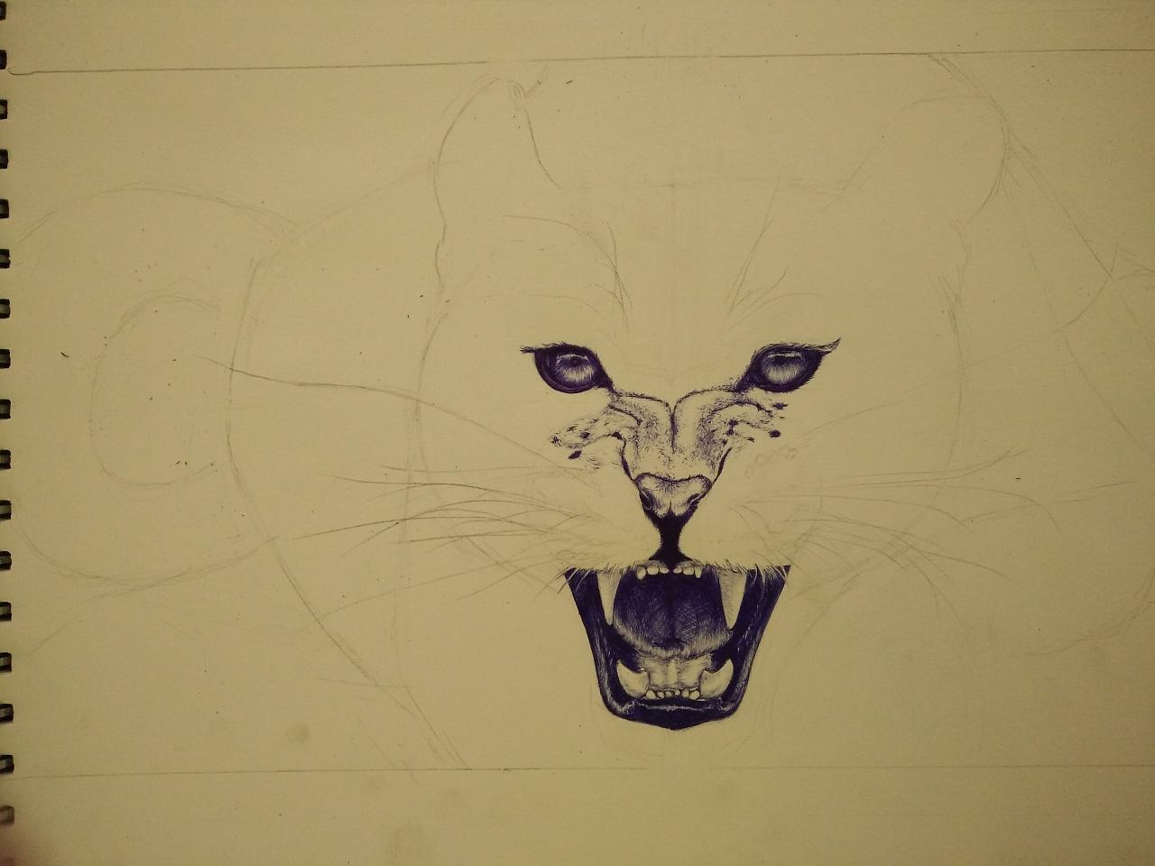 圆珠笔手绘【豹子】