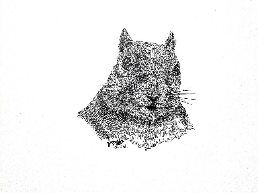 李万海钢笔手绘动物|钢笔画|纯艺术|李万海w手绘