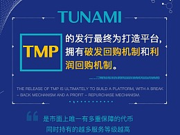 TUNAMI 网站设计