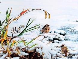 《初雪》风景系列