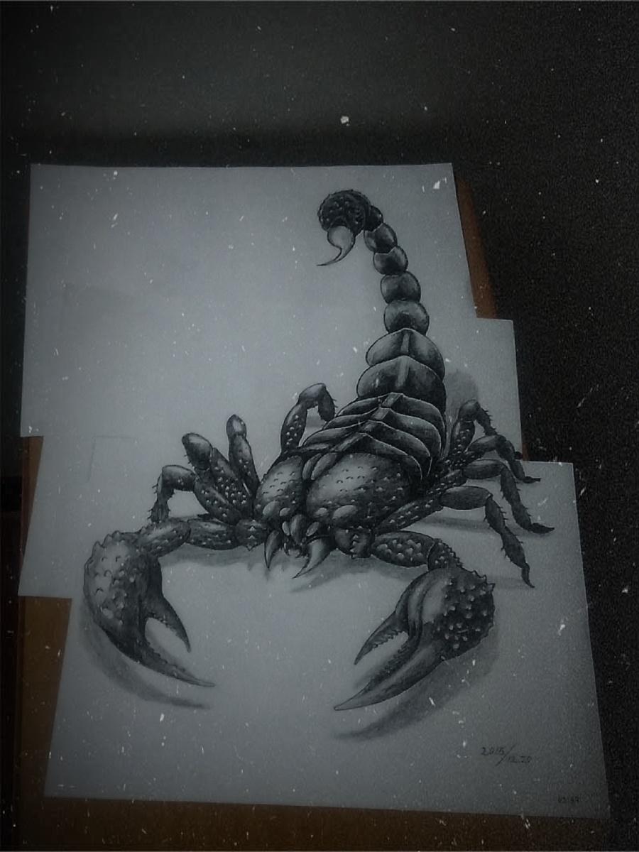3d蝎子手绘设计|其他绘画|插画|疯子雁北