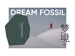 梦的化石 LOGO 设计