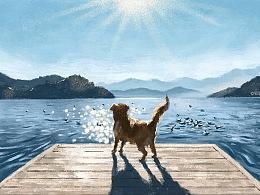 《泸沽湖畔一条狗》