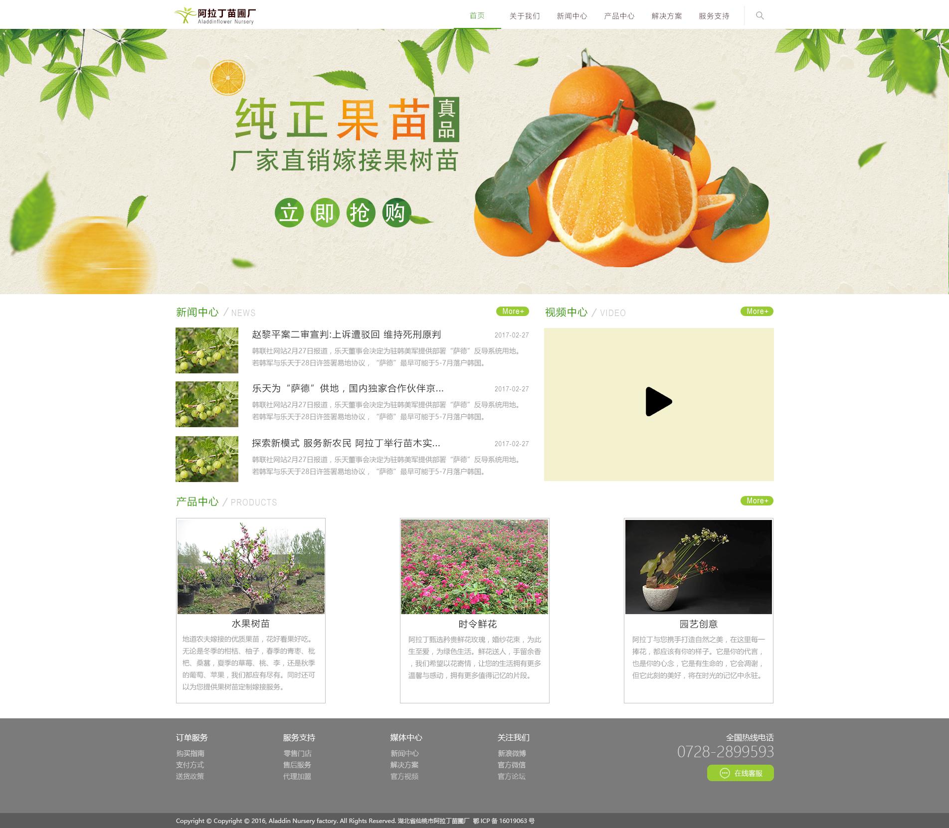阿拉丁苗圃厂是一家专门做水果盆栽的企业,所以以绿色作为主要点缀色.图片