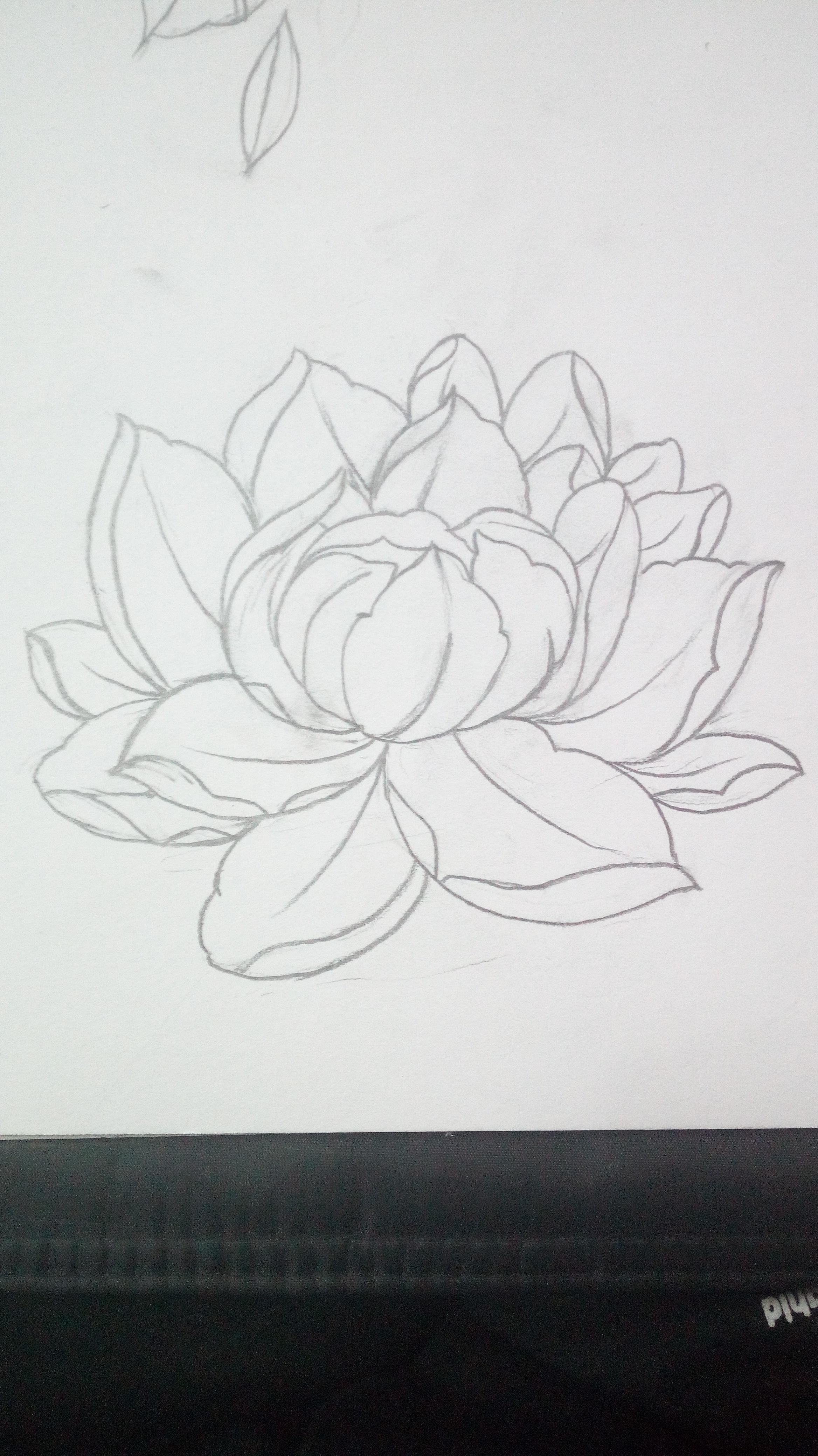 简笔画 手绘 素描 线稿 2336_4160 竖版 竖屏