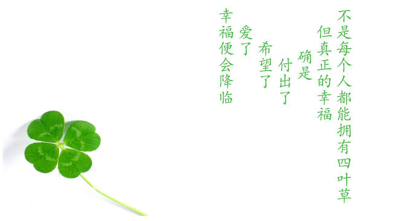 《那一片,四叶草》 平面 品牌 王ghost - 原创作品图片