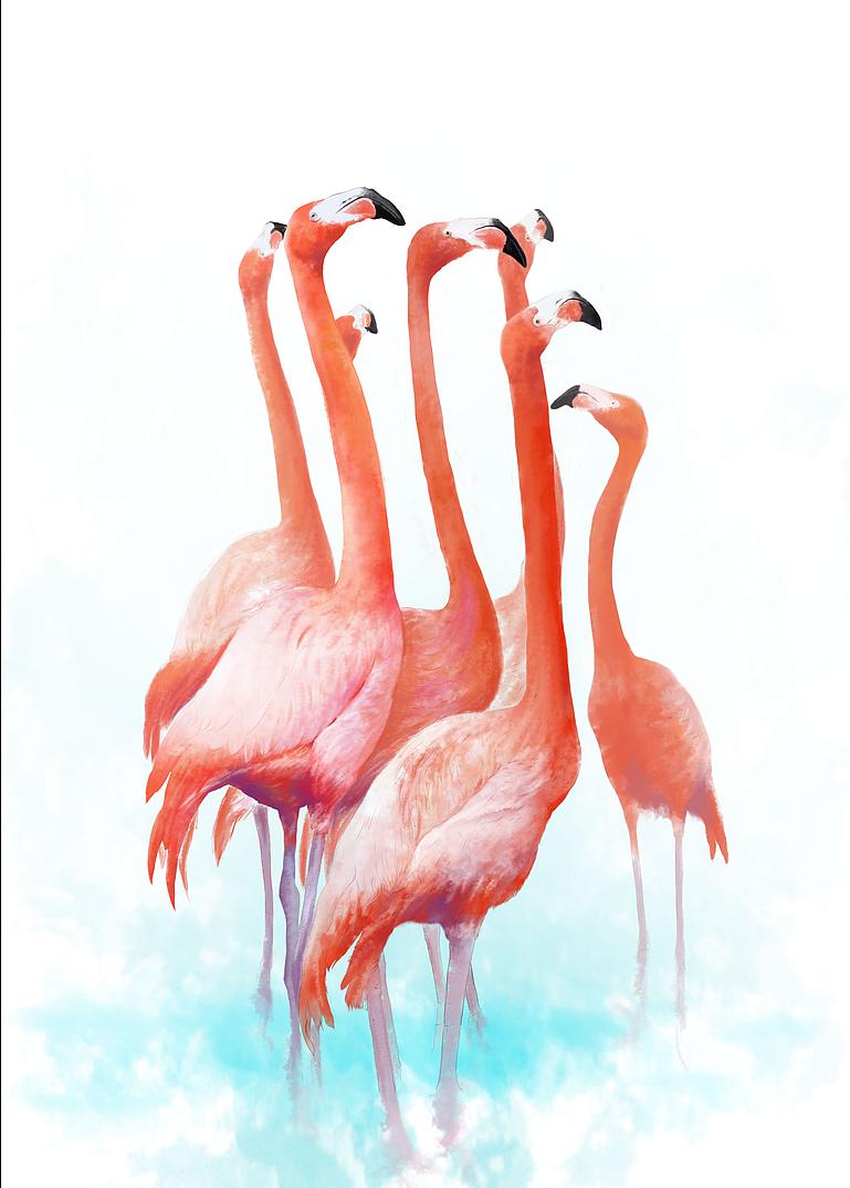 火烈鸟客厅装饰画现代简约