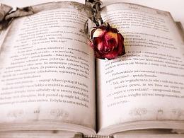 与其让人阅读,不如让人想象,到底是什么在限制你的思考方式