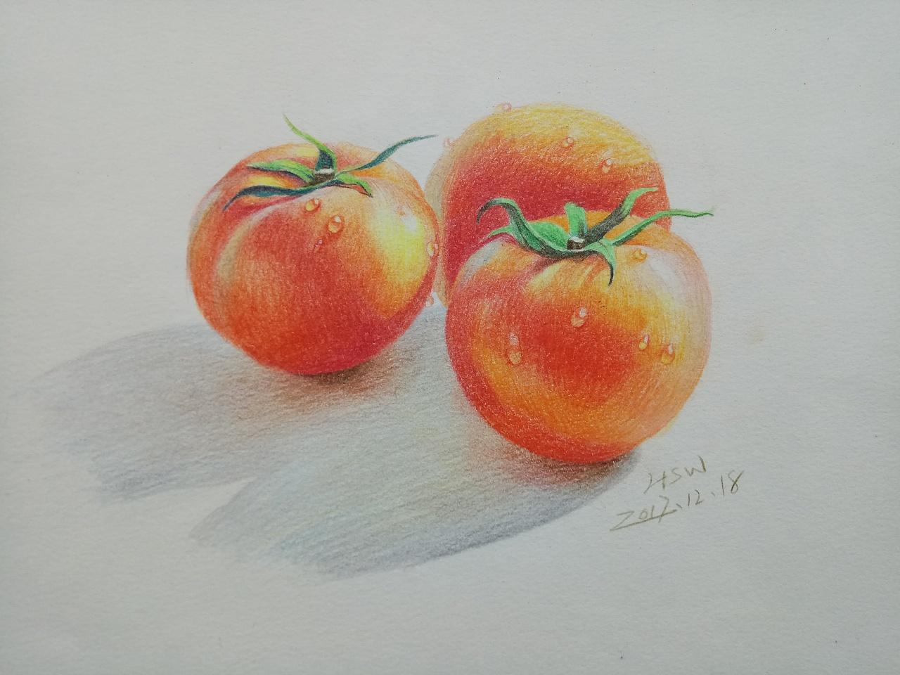 彩铅画–西红柿
