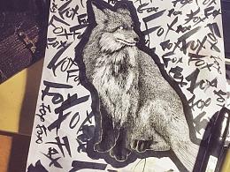Mr.fox JR