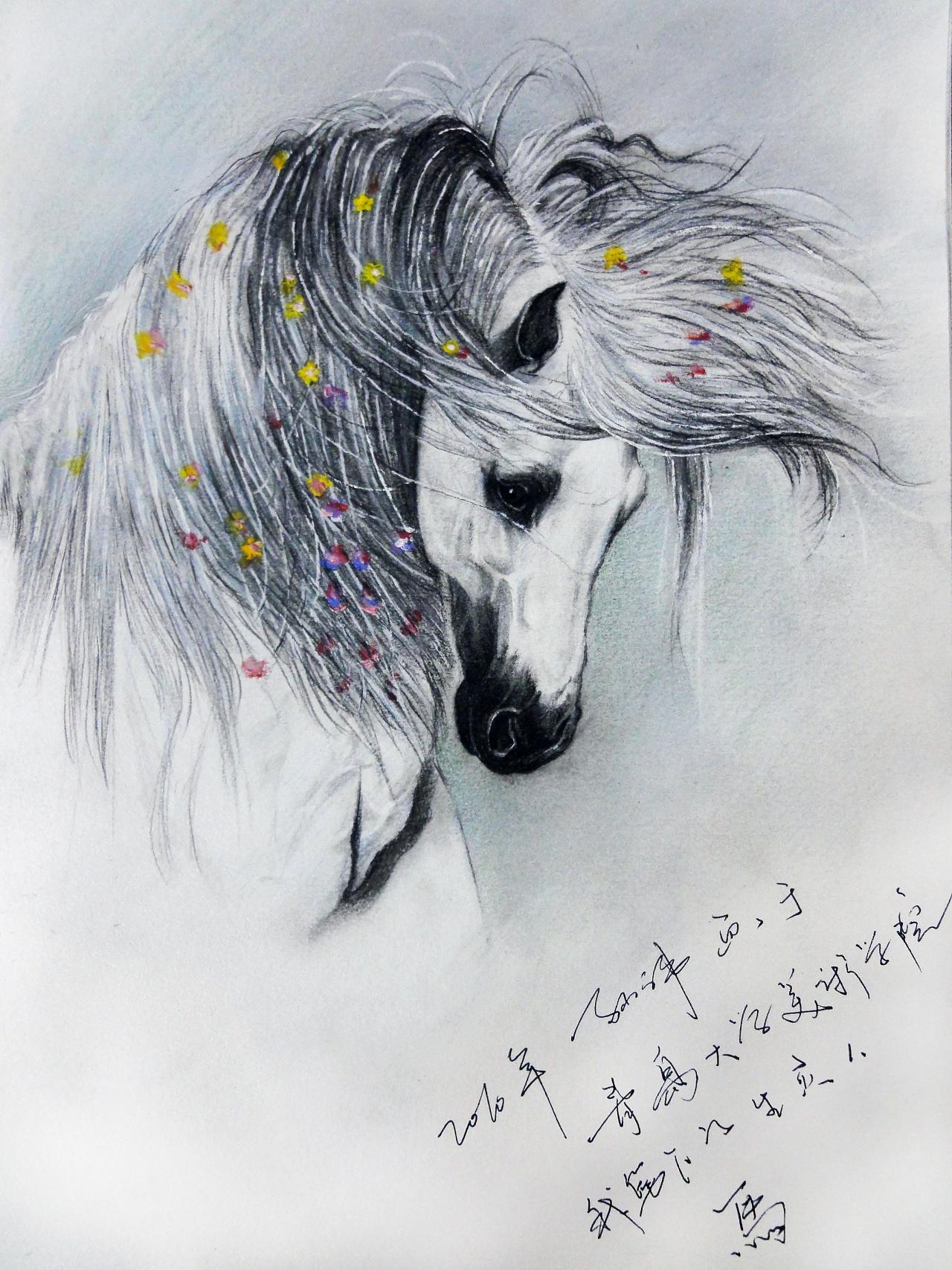 小伟 彩铅 及素描绘画作品汇总 感谢大家一路的支持