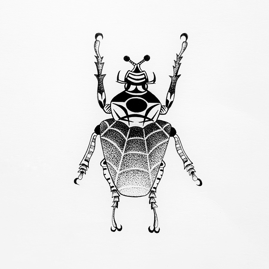 原创作品:手绘甲虫