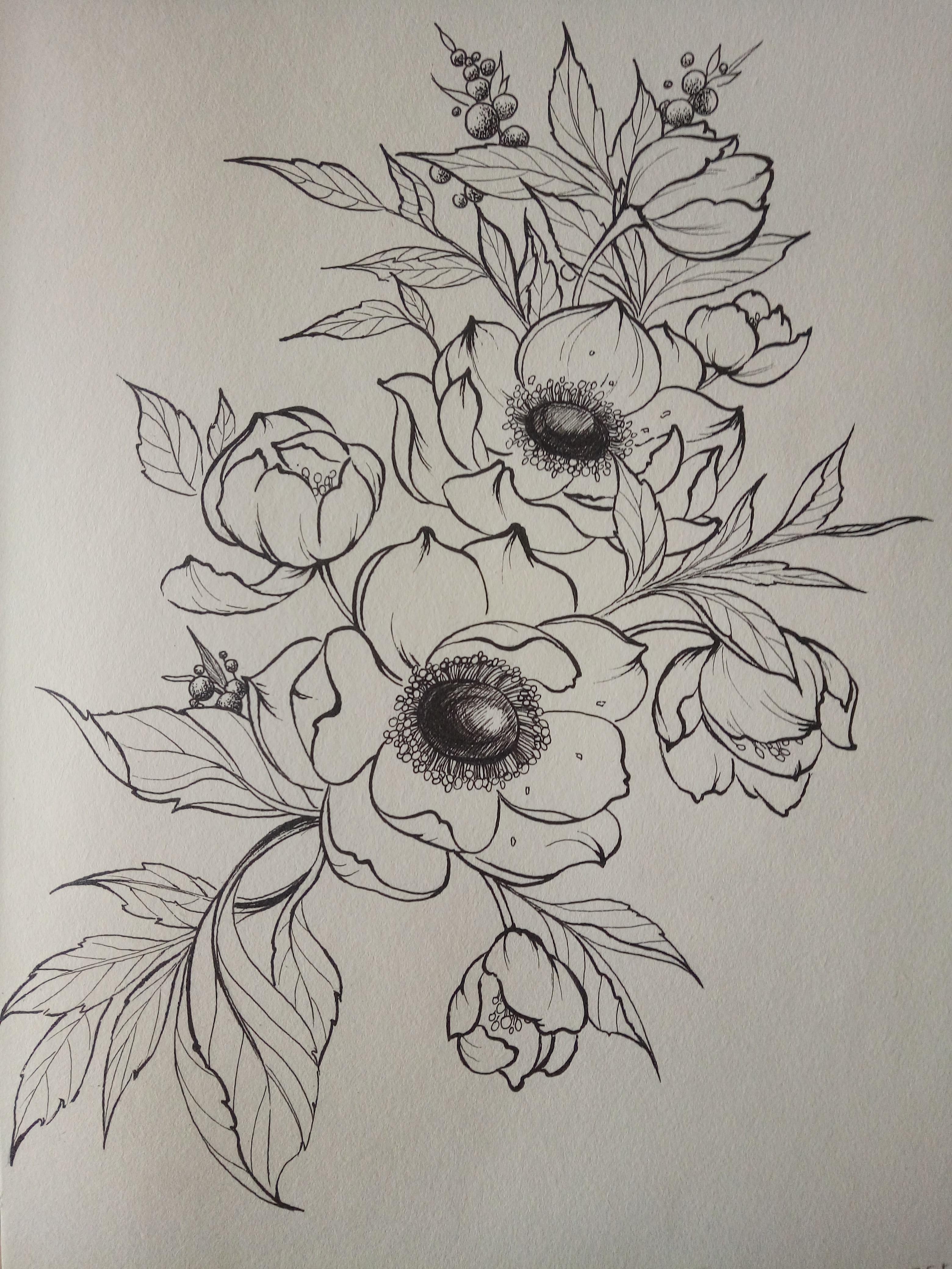 铅笔画图片唯美花朵|花画图片大全简单素描|玫瑰花素描画图片大全