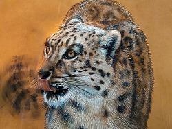 孟璐璐手工皮雕——雪豹系列作品之《望山2》