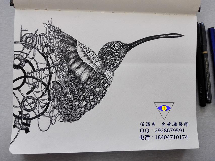 用黑白手绘的方法,将我喜爱的蜂鸟绘画出来