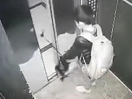 惊险!小男孩拿雨伞卡电梯玩耍险被带飞 被困后吓哭